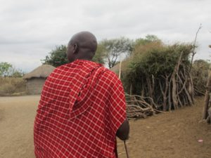 Masai_Chief